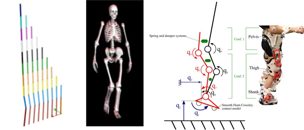 S'ha utilitzat el mètode desenvolupat en simulacions de moviment de pèndols, de la marxa humana i de moviment col·laboratiu entre persona i exoesquelet.