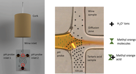 3D printed microfluidic sensor for measuring ionic concentration.