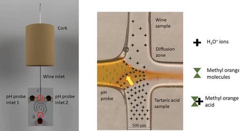 Sensor microfluidico impreso en 3D para la medida de la concentración iónica.