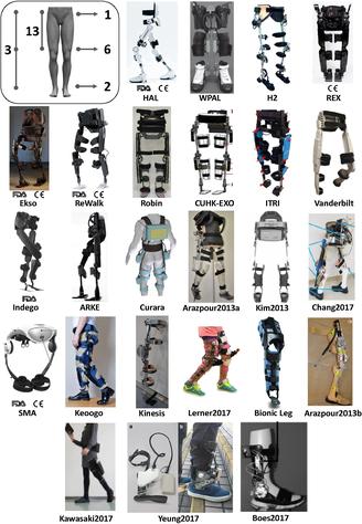 Exoesqueletos analizados en el artículo.